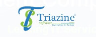 Top 10 Upcoming Software Companies 2021 | Triazine Software